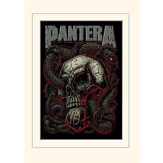 Poster Pantera - (&&string0&&) - PYRAMID POSTERS, PYRAMID POSTERS, Pantera