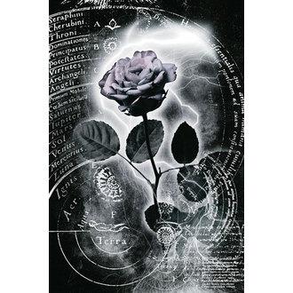 plakat Merkur Ruža, Reinders