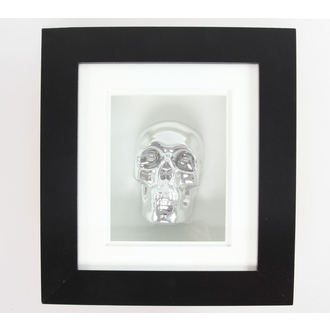 slika Silver Skull U Frame