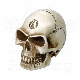 Ukras (ručica mjenjača) ALCHEMY GOTHIC - Alchemist Gear Knob: Bone, ALCHEMY GOTHIC