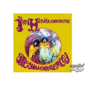 Figurica (3D slika) JIMI Hendrix su vi experienced plaque Slika, Jimi Hendrix