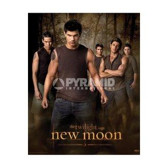 plakat Twilight - Novi Moon (Wolf Spakirati) - MPP50303, TWILIGHT