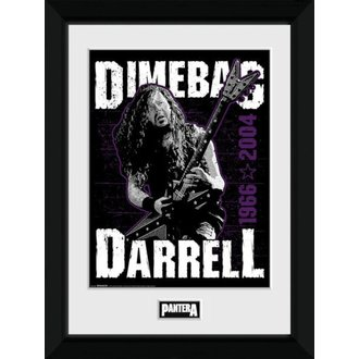 Poster (uramljen) Pantera - GB posters, GB posters, Pantera