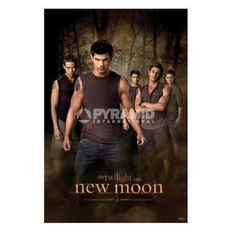 plakat Twilight - Novi Moon (Wolf Spakirati) (Twilight) - PP32065, TWILIGHT