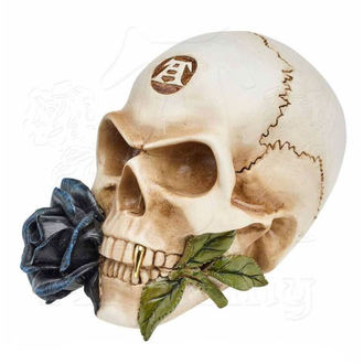 Ukras ALCHEMY GOTHIC - Alchemist Skull with Rose, ALCHEMY GOTHIC