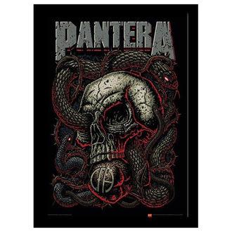 Uramljen poster Pantera - Snake Eye - PYRAMID POSTERS, PYRAMID POSTERS, Pantera
